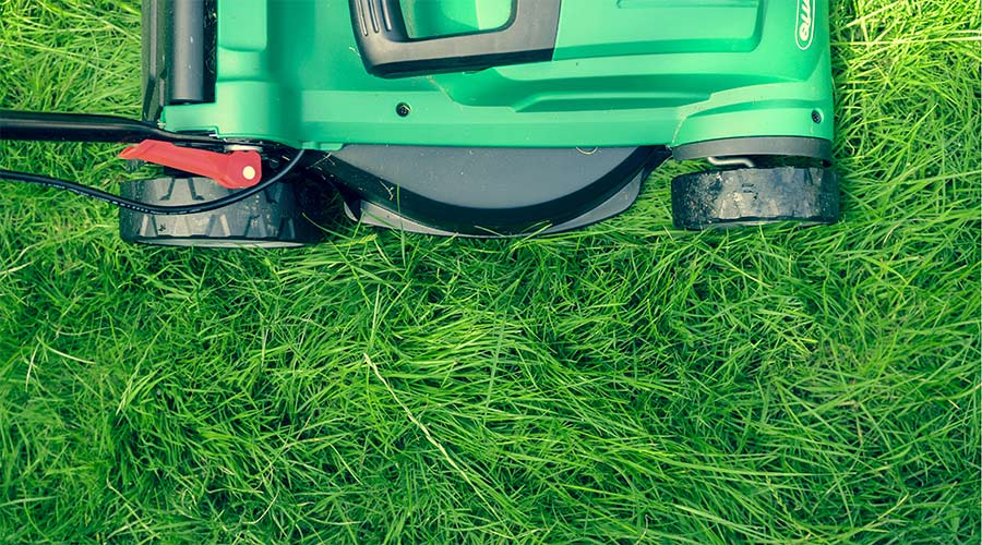 Green push lawn mower on grass